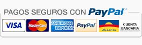 pago seguro paypal y visa